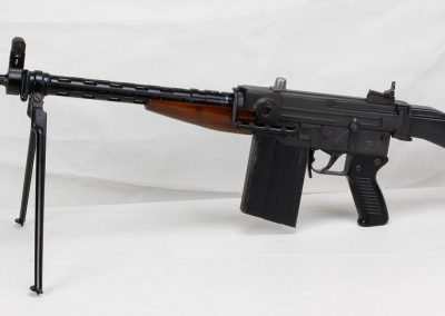 Sig AMT .308 Swiss Assault Rifle 1