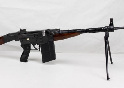 Sig AMT .308 Swiss Assault Rifle 2