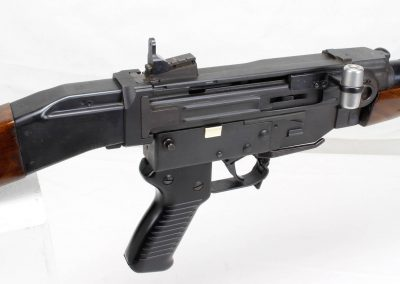 Sig AMT .308 Swiss Assault Rifle 8